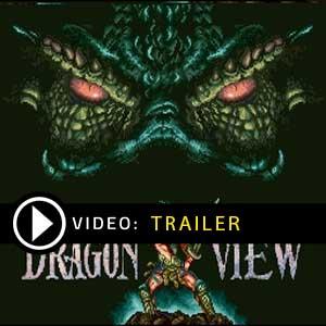 Dragonview