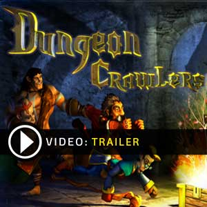 Buy Dungeon Crawlers HD CD Key Compare Prices
