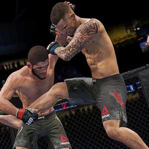 UFC 4 Professional