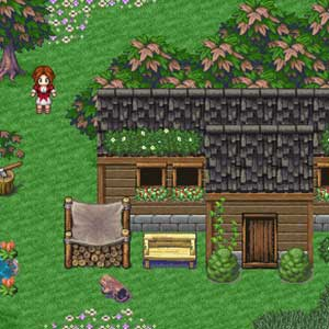 Willows simple house