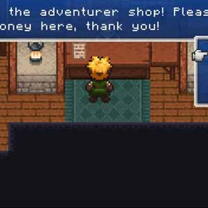 Evoland - Adventurer Shop