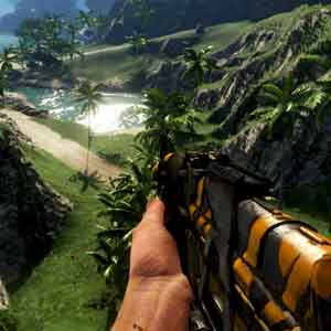 FAR CRY 3 Weapon