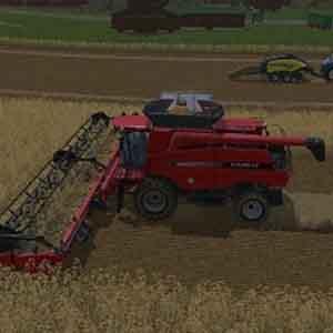 Harvesting Grains