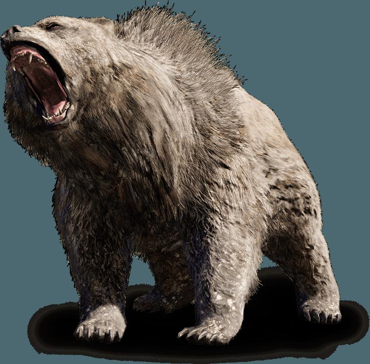 fcp_beast-bear_ncsa