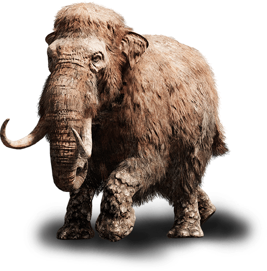 fcp_beast-mammoth-young_ncsa