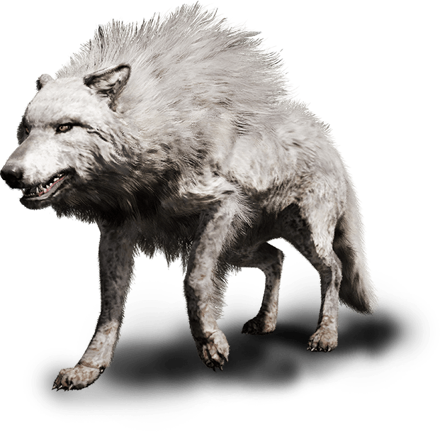 fcp_beast-wolf-cage_ncsa