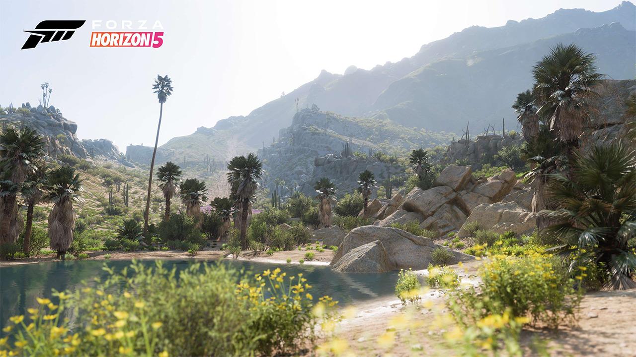 cheap Forza Horizon 5 game key sellers