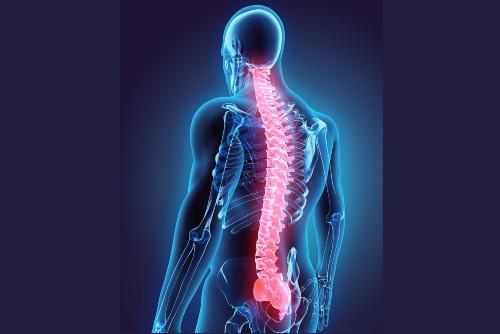 gamer spine