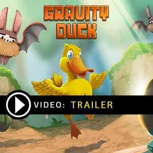 Buy Gravity Duck CD Key Compare Prices