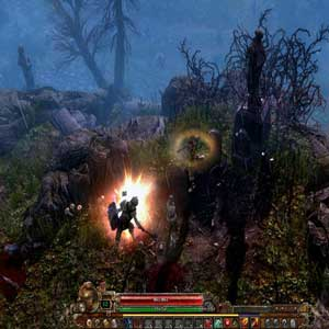 Grim Dawn Burial hill