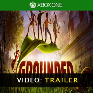 Buy Grounded Xbox One Game Code Compare Prices