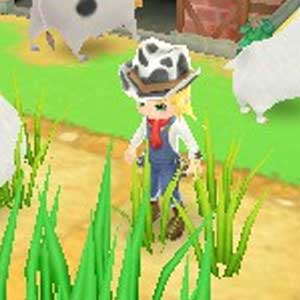 Harvest Moon 3D A New Beginning Nintendo 3DS Characters