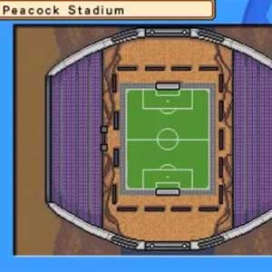 Inazuma Eleven 3 Team Ogre Attacks Nintendo 3DS Peacock Stadium