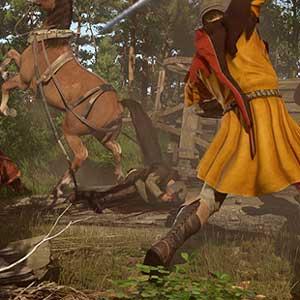 Real historical European sword-fighting