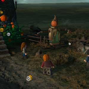 Lego Harry Potter Years 5-7 - Fields