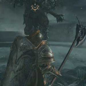 Lords of the Fallen Worshiper