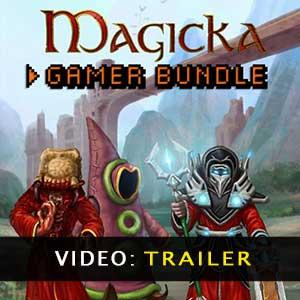 Magicka Gamer Bundle