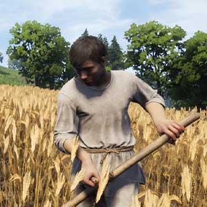 Medieval Dynasty Farming