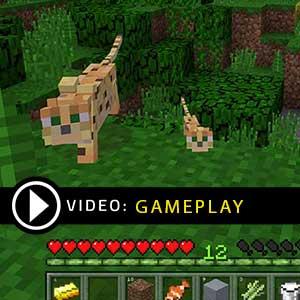 Minecraft for windows 10 Gameplay Video