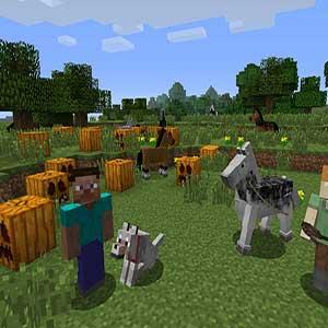 Minecraft Let's Build