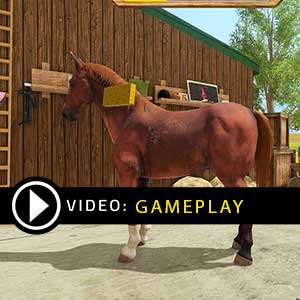 My Little Riding Champion Nintendo Switch Gameplay Video