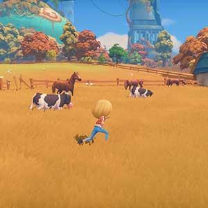 Portia horse barn