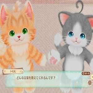 Nekoko and Tomomo