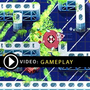 Pig Eat Ball Gameplay Video
