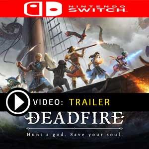 Pillars of Eternity 2 Deadfire Nintendo Switch Prices Digital or Box Edition