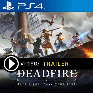 Pillars of Eternity 2 Deadfire PS4 Prices Digital or Box Edition