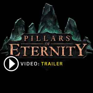 Buy Pillars of Eternity CD Key Compare Prices