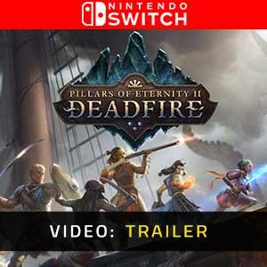 Pillars of Eternity 2 Deadfire Nintendo Switch Video Trailer