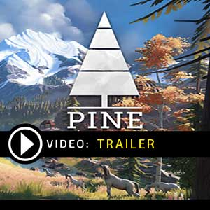 Buy Pine CD Key Compare Prices