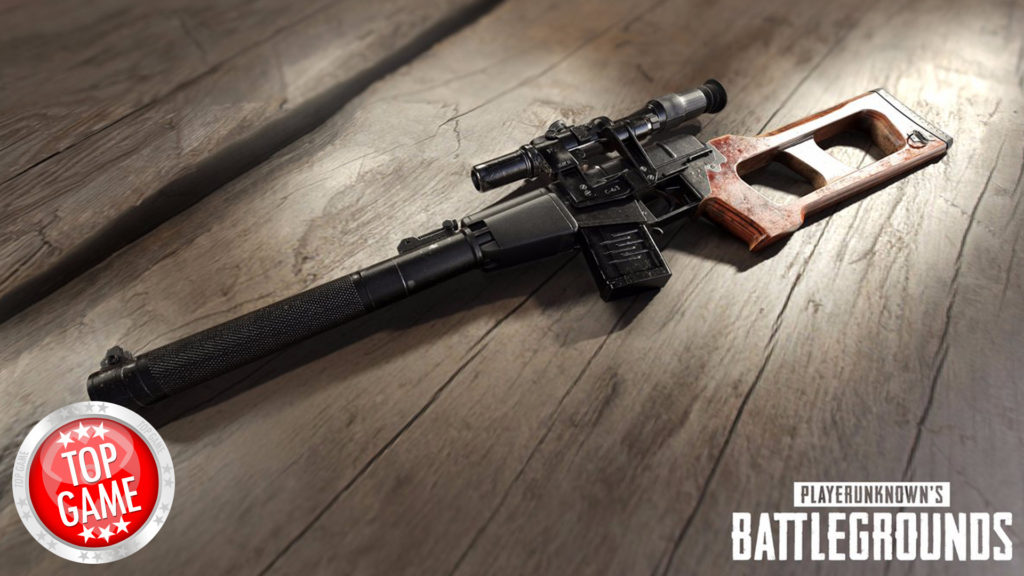 New PlayerUnknown's Battlegrounds Weapon Cover