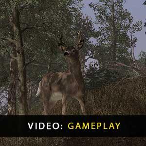 Pro Deer Hunting Gameplay Video