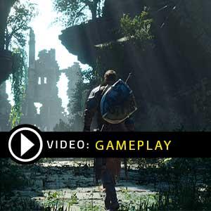 Project Awakening PS4 Gameplay Video