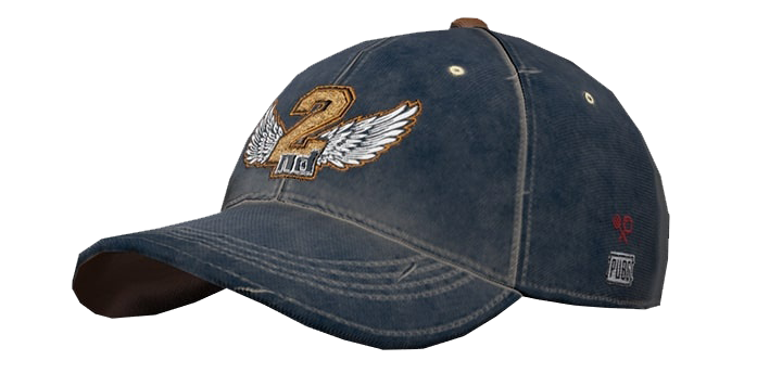 PUBG 2nd Anniversary Cap In-Game Item