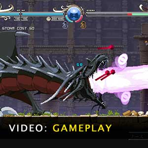 Record of Lodoss War Deedlit in Wonder Labyrinth Gameplay Video