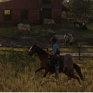 Red Dead Redemption 2 Horesback Riding