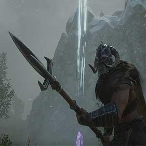 Viking allies