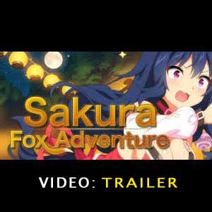 Sakura Fox Adventure