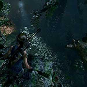 unforgiving jungle