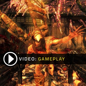 Shadow Warrior PS4 Gameplay Video
