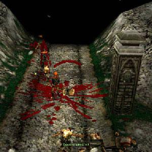 Soulbringer - Screenshot