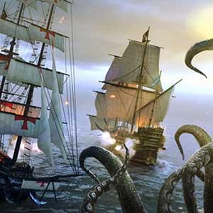 Pirate cooperation