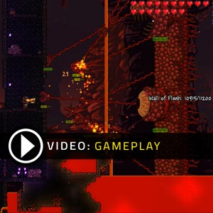 Terraria Nintendo 3DS Gameplay Video