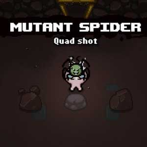 The Binding of Isaac Afterbirth Mutant Spider