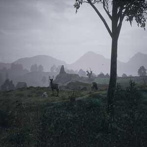 The Black Death Medieval land