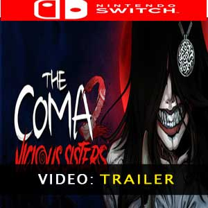The Coma 2 Vicious Sisters Nintendo Switch Prices Digital or Box Edition