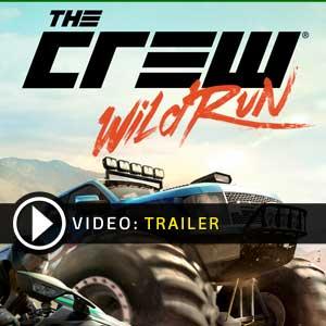 Buy The Crew Wild Run CD Key Compare Prices